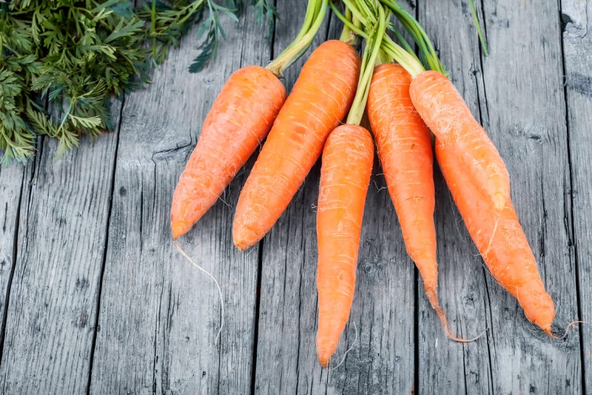 fresh-carrots-P6FH87X-1200x800.jpg